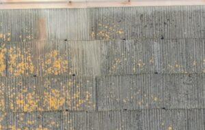 堺市 屋根 外壁 塗装工事 ドローン